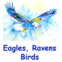 Eagles, Ravens, Pelicans & Birds