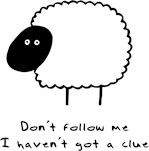 Don't Follow Me.  I Haven't Got A Clue.