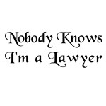 The Closet Lawyer