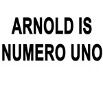 ARNOLD IS NUMERO UNO T-Shirts and Gym Apparel