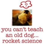 ROCKET SCIENCE DOG