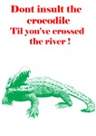 Don´t insult the crocodile
