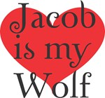Breaking Dawn-Jacob is my Wolf