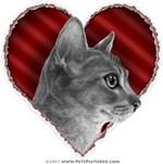 Abyssinian Cat Valentine
