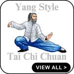 YANG STYLE TAI CHI T-SHIRTS