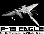F-15 Eagle #11