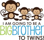 Monkey Big Brother to Twins