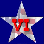 VI Patriotic Star