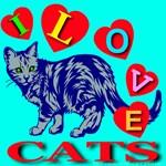 I Love Cats Blue Jade