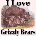 I Love Grizzly Bears First Edition