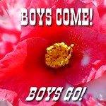Boys Come! Boys Go!