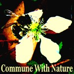 Commune With Nature