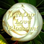 Let Our Love Blossom Magnolia