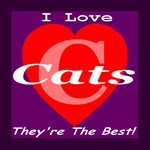 I Love Cats