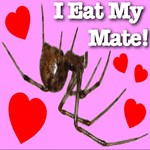 I Eat My Mate!