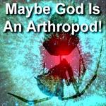 Maybe God Is An Arthropod!