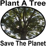 Plant A Tree Save The Planet