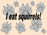 I eat squirrels
