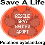 Petathon Save A Life Ruby Red Paw Medallion