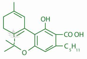 Cannabis Chemisty