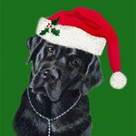 Lola, The Black Lab Santa