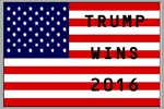 TRUMP WINS 2016