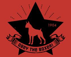 Boxer Star Logo