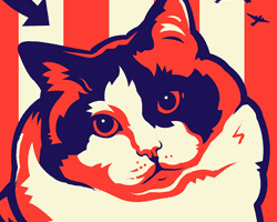 Obey the Kitty! USA