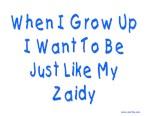 Just Like Zaidy