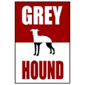 Classic Red Greyhound