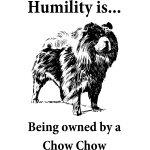 Owned by a Chow Chow