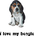 Beagle Lover T-Shirts