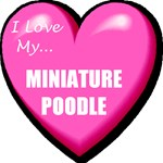 I Love My Miniature Poodle T-Shirts