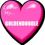 I Love My Goldendoodle T-Shirt