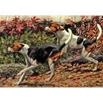 American Foxhound Art
