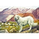 Great Pyrenees Art