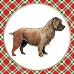 Glen Of Imaal Terrier Gifts