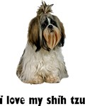 Shih Tzu T-Shirt - I Love My