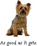 Silky Terrier T-Shirt - Good Dog