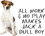 All Work No Play Jack Russell Terrier T-Shirts