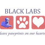 Black Lab Paw Prints T-Shirt