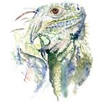 Rex the Iguana