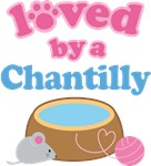 Loved By A Chantilly Cat T-shirts
