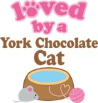 Loved By A York Chocolate Cat Tshirt Gifts
