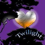 New Moon T-Shirts, Twilight Valentine.