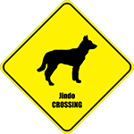 Jindo Crossing