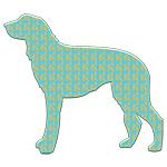 Paisley Scottish Deerhound
