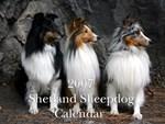 Sheltie Calendars