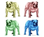 4 Color Bulldog Design