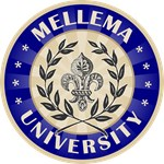 Mellema Last Name University Tees Gifts